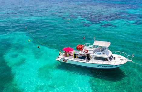 John Pennekamp State Park Snorkeling as One of the Best Spot in Florida 1
