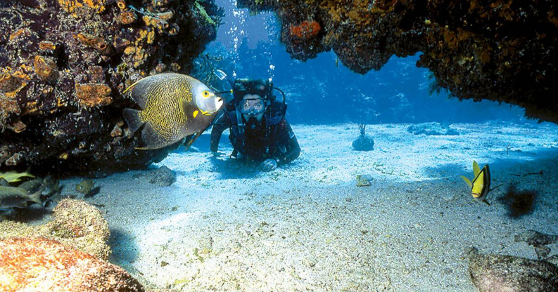 John Pennekamp State Park Snorkeling as One of the Best Spot in Florida 2